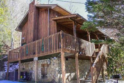 Sevierville Single Family Home For Sale: 3029 Birds Creek Road Unit 2