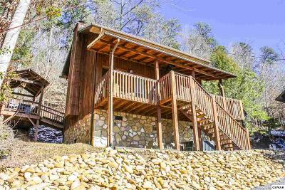 Sevierville Single Family Home For Sale: 3029 Birds Creek Road Unit 1