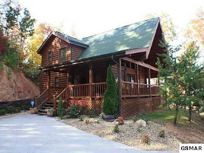 Sevierville Single Family Home For Sale: 3116 Perry Circle Way
