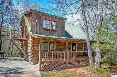 Sevierville Single Family Home For Sale: 1844 Beach Front Dr