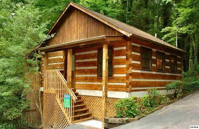 Gatlinburg Single Family Home For Sale: 607 Red Bud Lane
