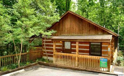 Gatlinburg Single Family Home For Sale: 619 Red Bud Lane