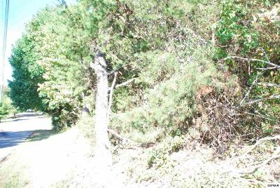 Pigeon Forge Residential Lots & Land For Sale: Lot 18 Easy Street