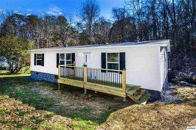Sevierville Single Family Home For Sale: 220 Love Road