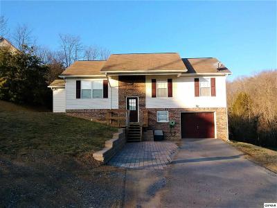 Sevierville Single Family Home For Sale: 2309 Quartz Court