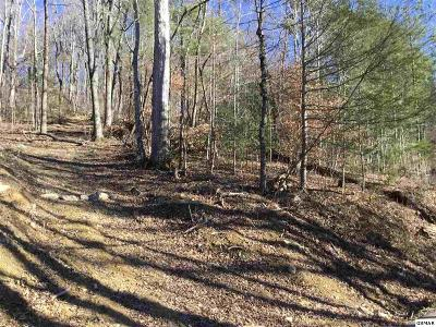 Sevierville Residential Lots & Land For Sale: Lot 1 Clabo Mountain Way
