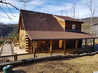 Gatlinburg Single Family Home For Sale: 3616 Moonshine Way