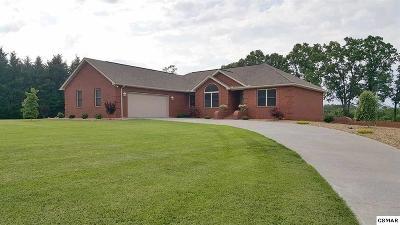 Dandridge Single Family Home For Sale: 863 Chestnut Grove Circle