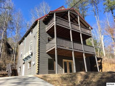 Gatlinburg Single Family Home For Sale: 919 Powdermill Road