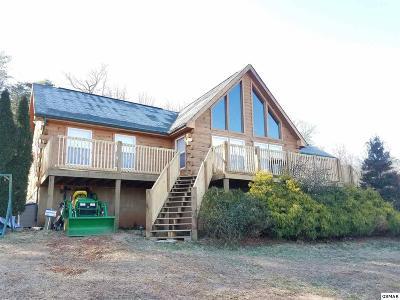 Dandridge Single Family Home For Sale: 705 Old Dandridge Pike