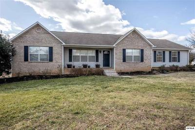 Maryville Single Family Home For Sale: 2924 Bradford Way