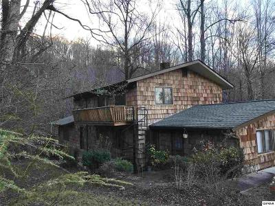Gatlinburg Single Family Home For Sale: 726 Chewase Drive