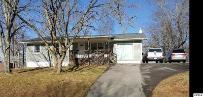 Seymour Single Family Home For Sale: 822 Houston Dr