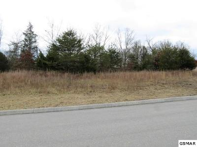Sevierville TN Residential Lots & Land For Sale: $19,999