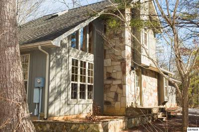 Townsend Single Family Home For Sale: 199 Cold Springs Trace