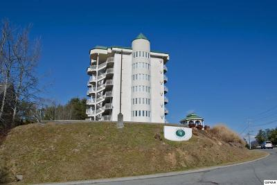 Pigeon Forge Condo/Townhouse For Sale: 503 Dollywood Ln # 132
