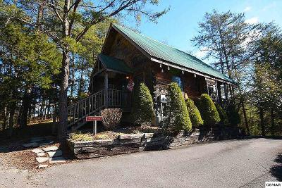 Pigeon Forge Single Family Home For Sale: 3174 Chapel Way