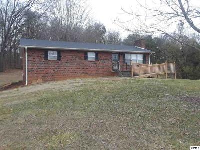 Kodak Single Family Home For Sale: 150 150 Piney Rd