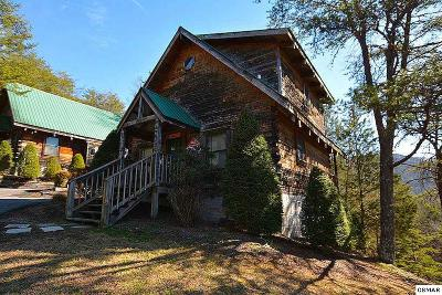 Pigeon Forge Single Family Home For Sale: 3172 Chapel Way