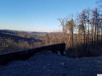 Gatlinburg TN Residential Lots & Land For Sale: $49,000