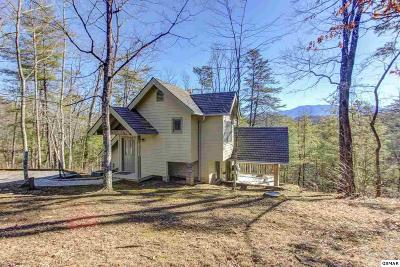 Sevierville Single Family Home For Sale: 3539 Birds Creek Road