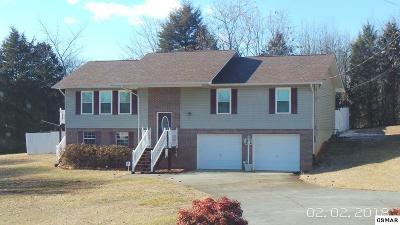 Dandridge Single Family Home For Sale: 301 St. Edward Drive