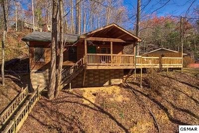Gatlinburg Single Family Home For Sale: 1136 Powdermill Rd.