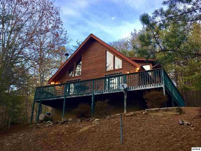 Pigeon Forge Single Family Home For Sale: 840 Boone Acres Ln