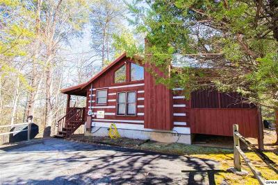 Sevierville Single Family Home For Sale: 1506 Ridgecrest Dr
