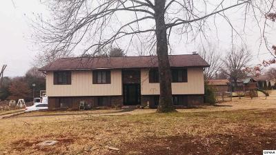 Maryville Single Family Home For Sale: 1007 Laurie St