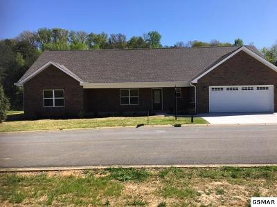 Sevierville Single Family Home For Sale: 2007 Glacier Ave
