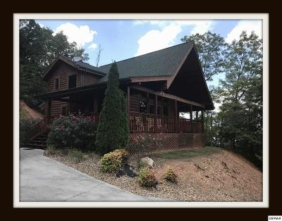 Sevierville Single Family Home For Sale: 3116 Perry Circle Ln