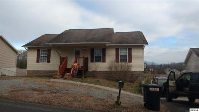 Sevierville Single Family Home For Sale: 316 Red Bud Ln