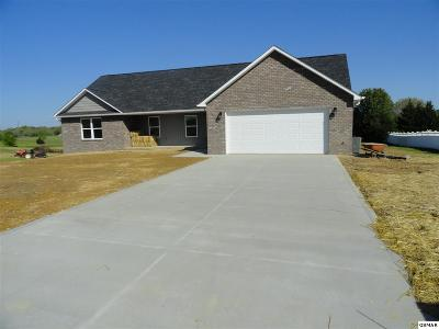 Sevierville Single Family Home For Sale: 629 Bryce View