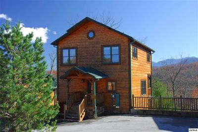 Gatlinburg TN Single Family Home For Sale: $469,900
