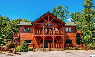 Gatlinburg Single Family Home For Sale: 319 Poplar Point Way