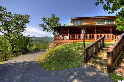 Sevierville Single Family Home For Sale: 4305 Black Powder Lane