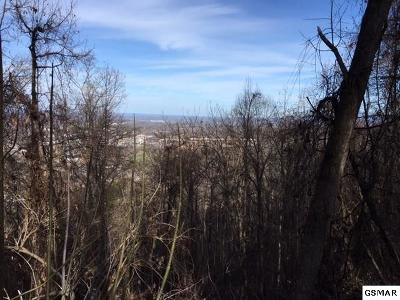 Pigeon Forge Residential Lots & Land For Sale: Lot 48 Twin City Way