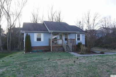 Sevierville Single Family Home For Sale: 2207 Sand Court
