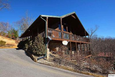 Sevierville Single Family Home For Sale: 2439 Breezy Road