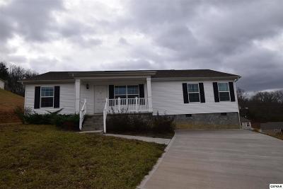 Dandridge Single Family Home For Sale: 1313 Elm Village Ct
