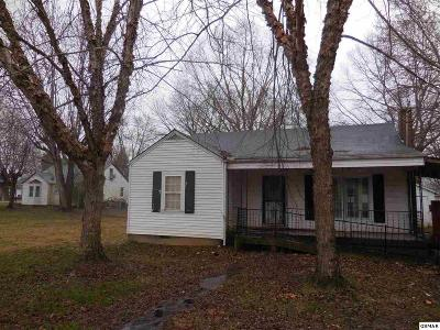 Sevierville Single Family Home For Sale: 205 Cross St.