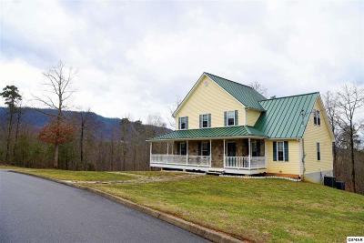 Sevierville Single Family Home For Sale: 130 Burning Oaks Dr