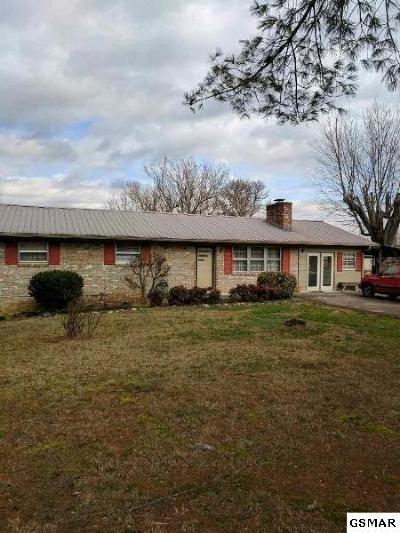 Seymour Single Family Home For Sale: 862 S Old Sevierville Pike