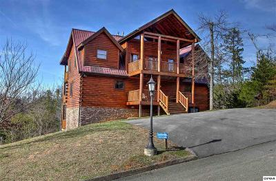 Sevierville Single Family Home For Sale: 1512 Turkey Valley Ln