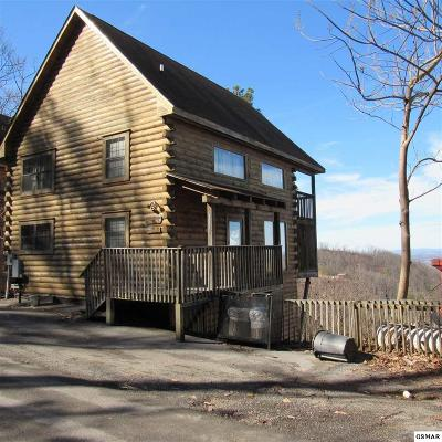 Sevierville Single Family Home For Sale: 2205 Foxberry Way