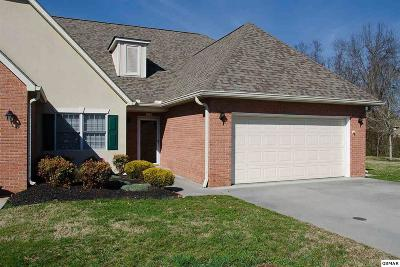 Sevierville Condo/Townhouse For Sale: 382 Paine Lake Dr.