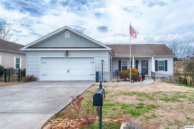Sevierville Single Family Home For Sale: 1116 Gregory Valley Dr.