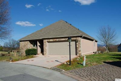 Sevierville Single Family Home For Sale: 224 Silvercrest Ct
