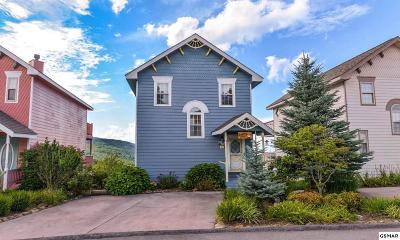 Gatlinburg Single Family Home For Sale: 1386 Ski View Dr
